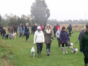 National Charity Dog Pack Walk