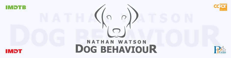Dog Behaviour & Training – Northampton UK