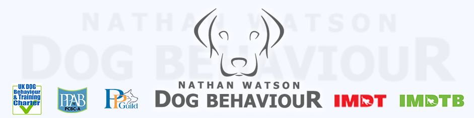 Dog Behaviour & Training – Northampton UK